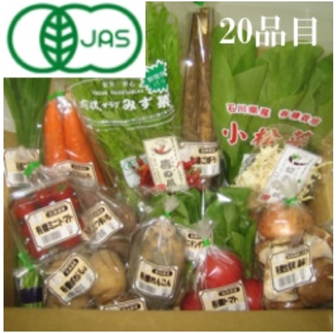 JAS認定有機栽培野菜セットLサイズ★20品目入り